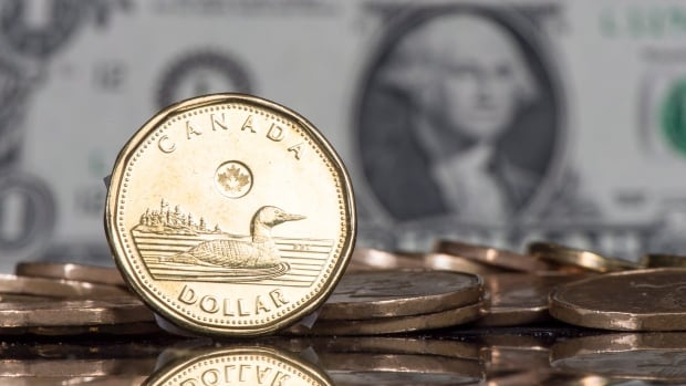 Since the start of the year, the loonie has lost more than three cents against the American dollar.