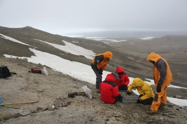 Researchers Seymour Island
