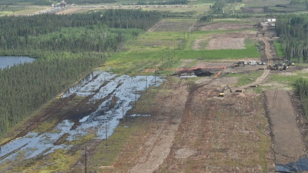 The spill, discovered July 15, occurred at Nexen Energy's facility near Long Lake, Alta. An Alberta First Nation wants more information from the company as it cleans up one of the largest pipeline spills in provincial history.