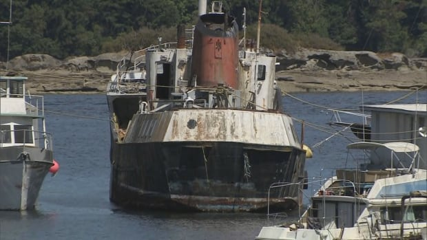 It's estimated there are more than 600 derelict vessels — ranging from giant commercial ships to small recreational boats — already polluting Canadian waterways.
