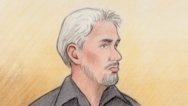 Gino Langevin pleaded guilty Thursday to manslaughter in the 2015 stabbing of his partner, Gail Fawcett.