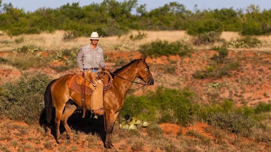 Largest Single Fence Ranch In The Us Up For Sale For 725m