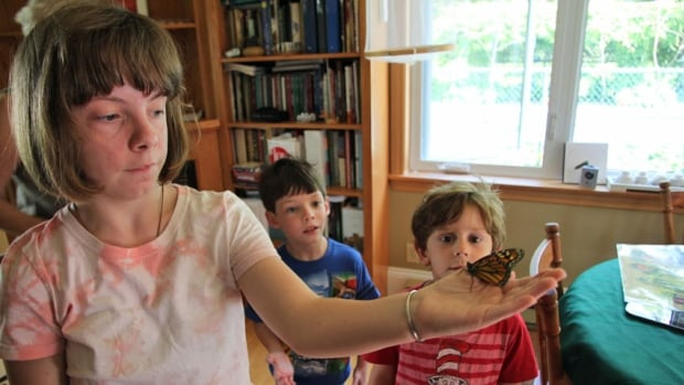 Jim Wilson's grandchildren, pictured here in 2015, admire a fully grown monarch before its release.