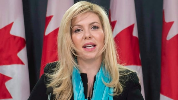 Provincial NDP distances itself from Eve Adams campaign after 'Andrea Horvath' endorsement