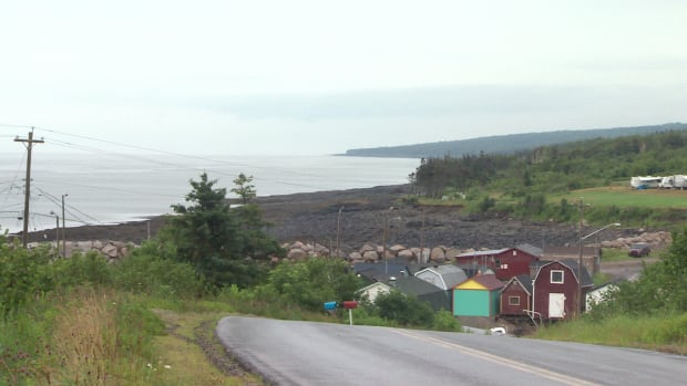 An absence of cellphone towers along Shore Road in Annapolis County have caused residents to create a petition to bring better coverage to the area.