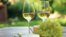 Aromatic white wines