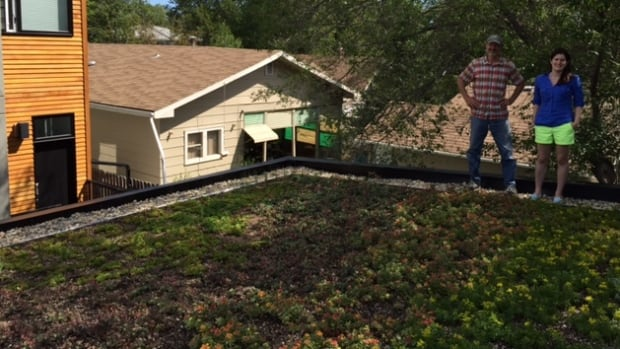 Julie Barnes, along with green roof consultant Michael Molaro, stand on top of Barnes' rooftop garage garden.