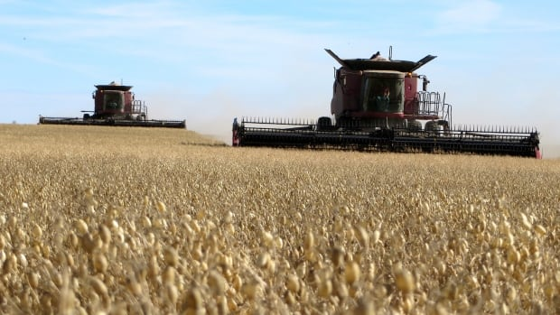 Harvest is underway in Saskatchewan after a hot and dry summer for most.