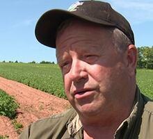 Alex Docherty, chairman, P.E.I. Potato Board