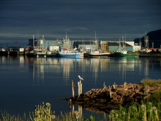 St. Lawrence fishplant by Edith Clarke
