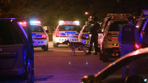 A Toronto police officer was struck by a car overnight near Jane Street and Wilson Avenue.