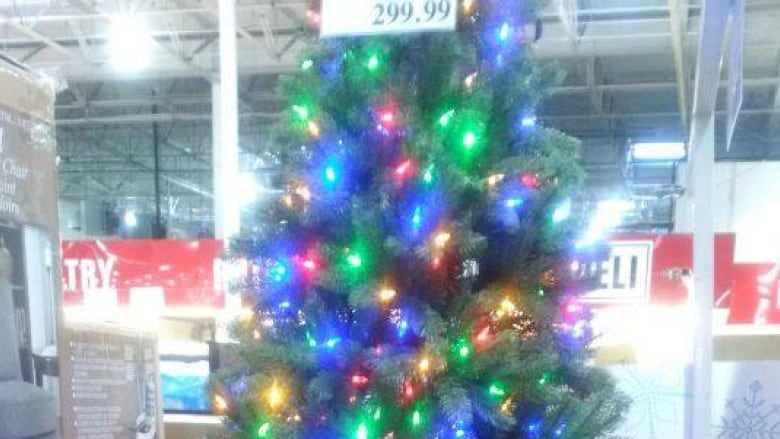 Windsor Costco already selling Christmas trees | CBC News