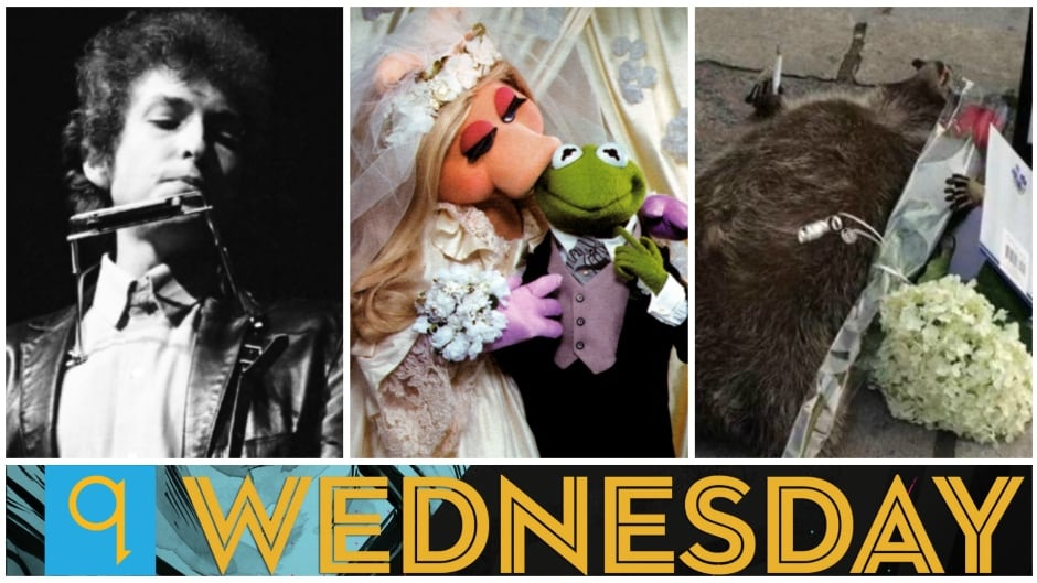 Today on q: Fact-checking 'Bob Dylan goes electric', q pop culture panel, Weird news gets weirder