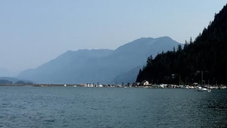 harrison lake hazy