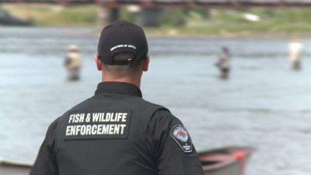 Fish and wildlife newfoundland salmon poaching