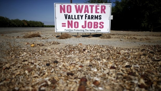 California's drought this summer is seen by many as climate change in action.