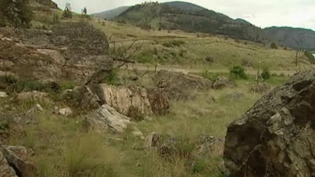 The sagebrush grasslands would been part of the South Okanagan-Lower Similkameen National Park which the province is asking for public consideration over.