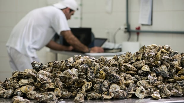 The price of shellfish like oysters continues to rise as oceans become more acidic says the BC Shellfish Grower's Association.