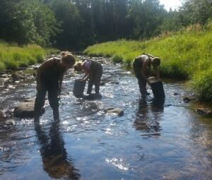 Mussel researchers