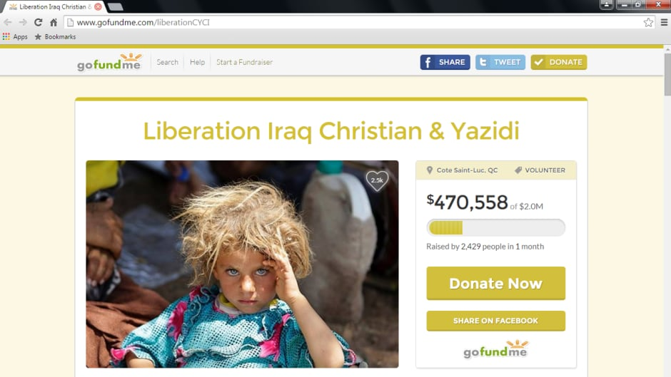 Screenshot of the CYCI GoFundMe page.