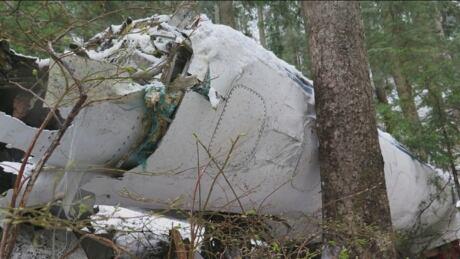 Carson Air plane crash