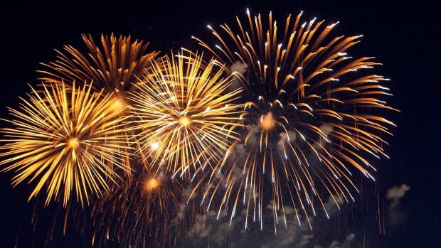 Fireworks will be permitted in Cambridge, Ont. during Diwali celebrations, after city council changed bylaws on Oct. 6, 2015.