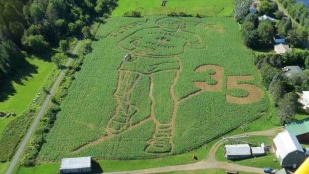 Farmer Chip Hunter says the Terry Fox Marathon of Hope corn maze in Florenceville-Bristol, N.B., took more than a year of planning.