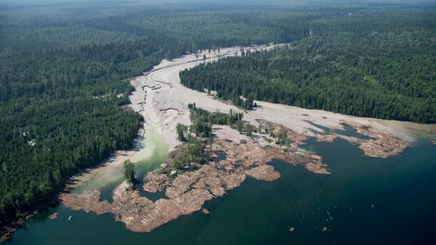 Toxic contents from a tailings pond flowed down Hazeltine Creek into Quesnel Lake near the town of Likely, B.C. on Aug. 5, 2014.