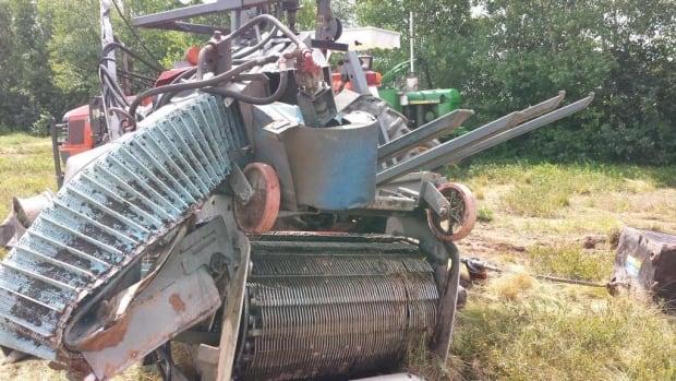 Blueberry harvester damage
