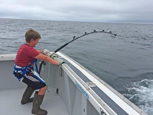 Koen Norton tuna battle