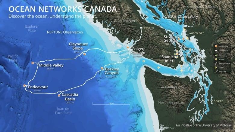 Deep sea robots livestream ocean floor landscapes, creatures