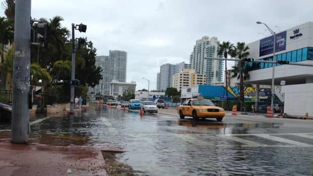 Alton Road and 10th Street in Miami Beach, Florida, floods on November 5, 2013. Recent sea level rise has led to an increase in flooding in low lying regions such as Florida.