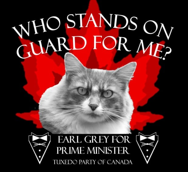 Early Grey wants your vote.