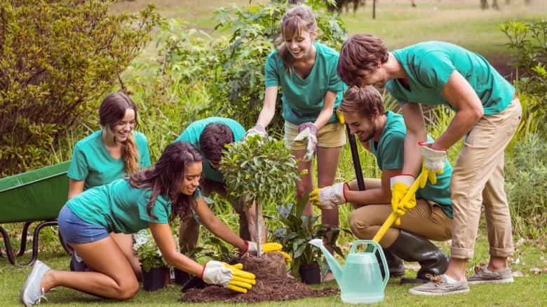 high school volunteering as some struggle to secure hours others