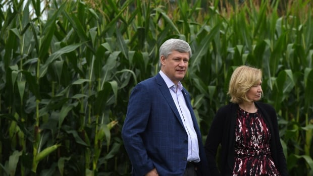 Canadians are hungry for more information about Conservative Leader Stephen Harper, according to search data released by Google Canada. But the questions they ask aren't necessarily what you might expect.