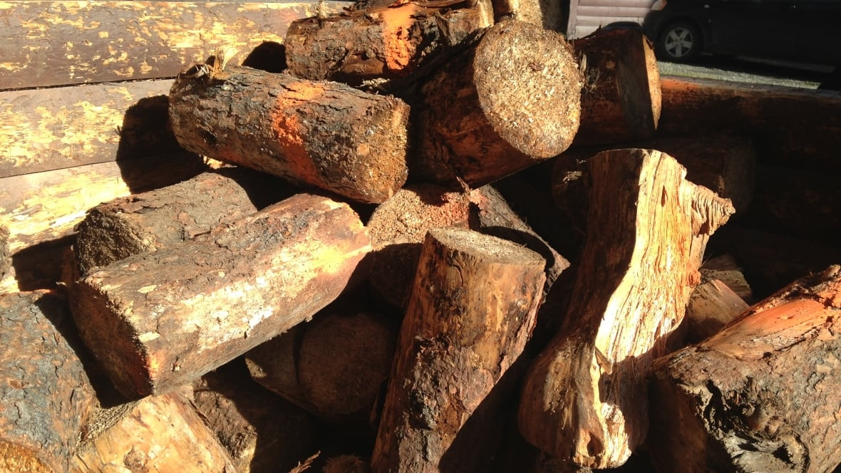 Http Firewood ~ Free firewood at yukon campgrounds proves tempting for