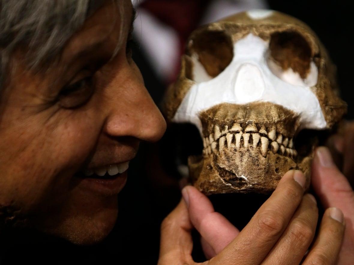 Bones Of Homo Naledi New Human Relative Found In South African
