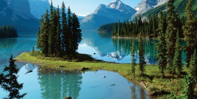 Parks Canada should focus on environment, not development, says report