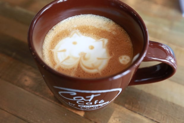 Cat Cafe by Purina latte art New York April 2014