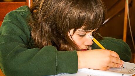 Edu Thesis  amp  Essay  Essay homework harmful helpful   Best Custom