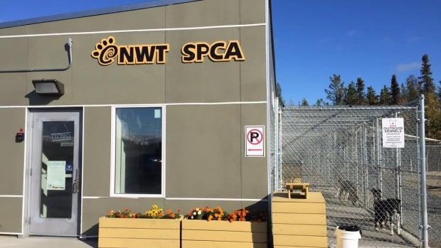 A construction worker in Yellowknife rescued a staff member at the NWT SPCA who was getting attacked by a dog.