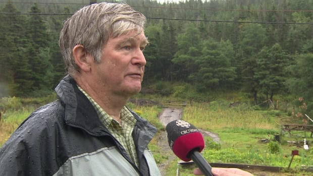 Michael Yetman says he's hoping to get money from the provincial government to expand his quinoa crop growing in St. Mary's Bay.