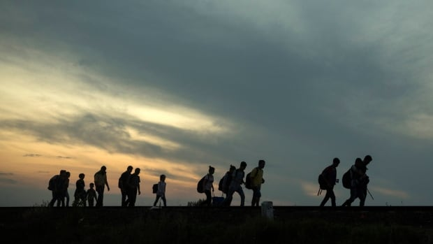 Refugees walk along the railway tracks in Hungary after crossing the border from Serbia.