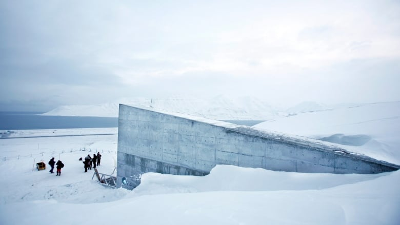 Doomsday Food Vault In The Arctic To Welcome One Millionth Crop