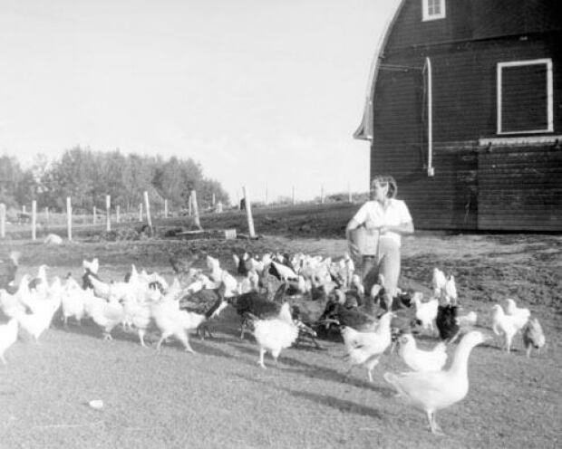 farming 1957