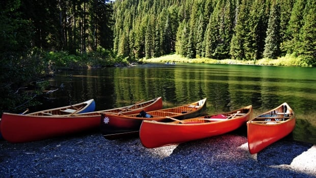 Author Roy MacGregor says canoes were the makeout mobiles of Victorian times... spawning the term 'canoodling'.