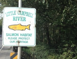 Little Campbell River