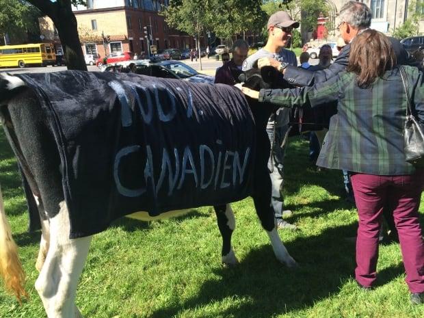 DairyProtestMontrealSept17