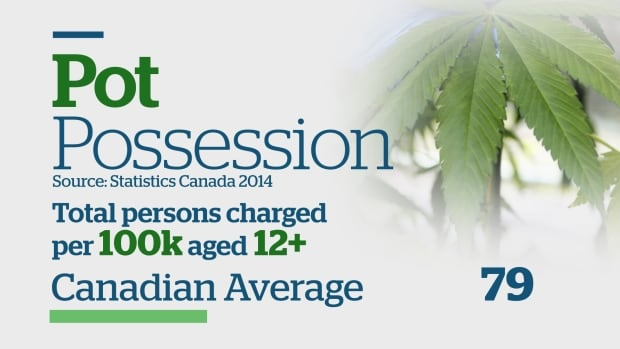 Pot possession infographic, part 1 of 3