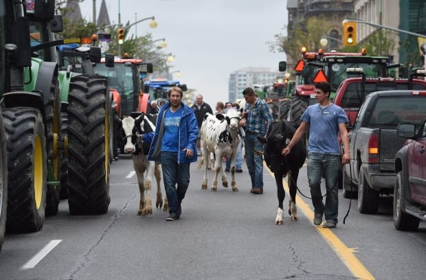 Dairy Farm Protest - sept29